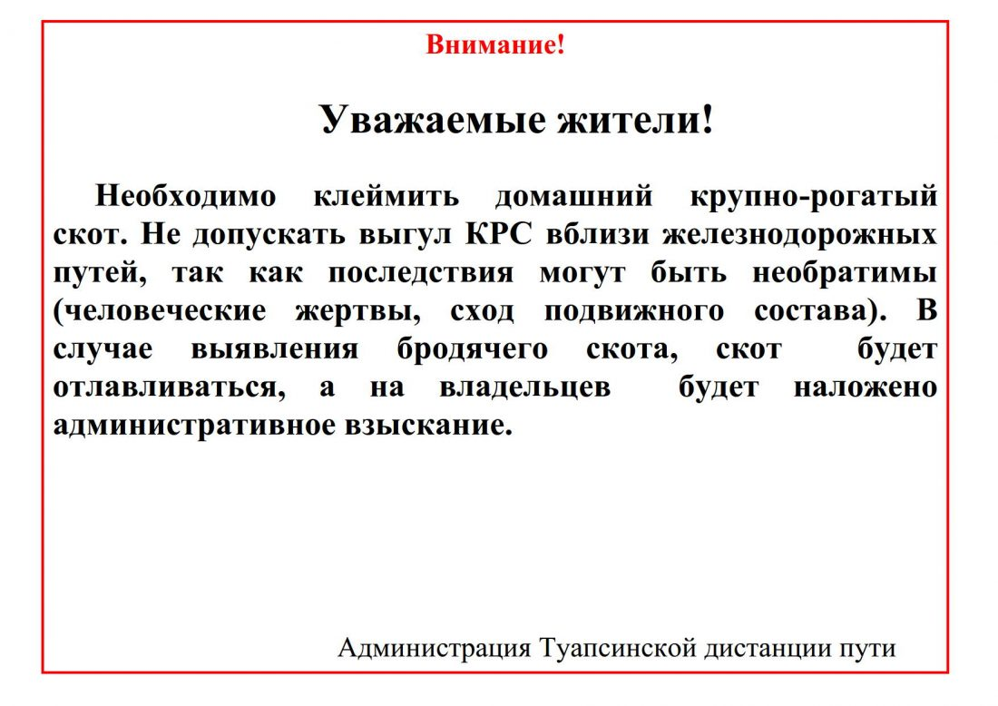 Аншлаг КРС_1
