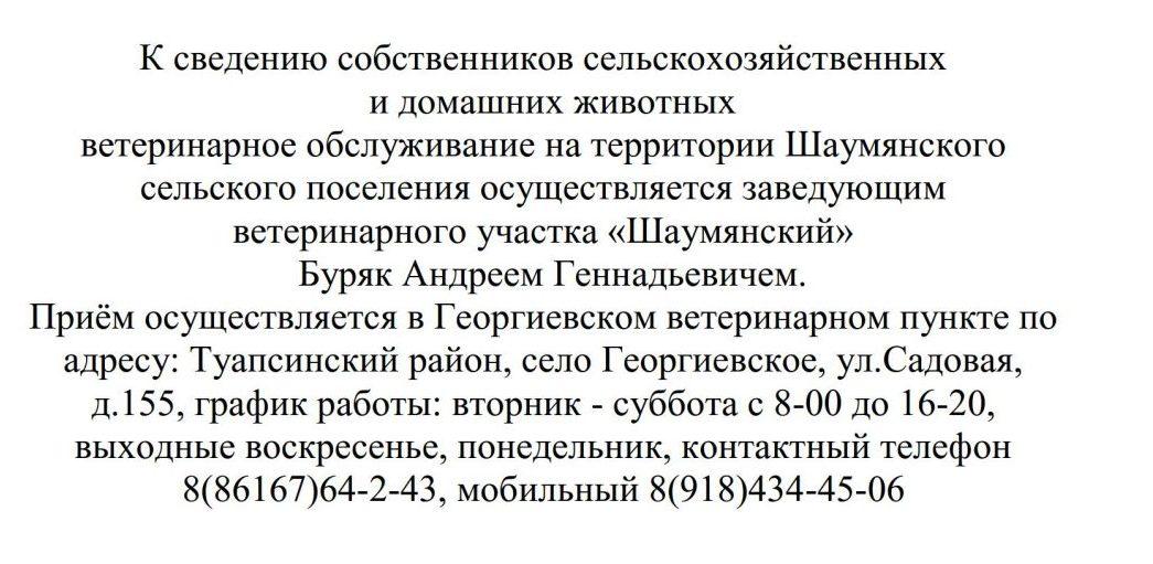Объявление о ветвраче_1
